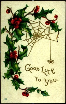 Spiders are good luck and it's bad luck to kill them.